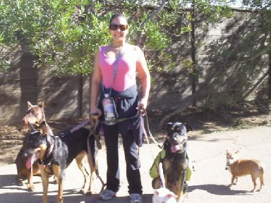 Aimee leading one her Basic Obedience Hikes at Runyon Canyon