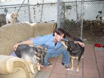 Rufus, Max & Sandy (when I lived with 6 dogs in 2004!)